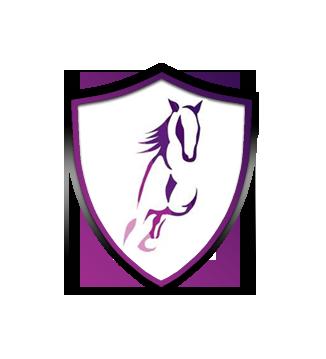 Aberdeenshire Horse Box Hire